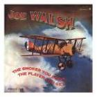 The_Smoker_You_Drink_,_The_Player_You_Get_-Joe_Walsh