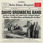 The_Blues,_The_Whole_Blues_And_Nothing_But_The_Blues-David_Bromberg_Band