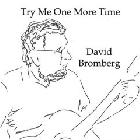 Try_Me_One_More_Time_-David_Bromberg