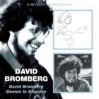 David_Bromberg_/_Demon_In_Disguise_-David_Bromberg