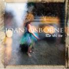 Little_Wild_One_-Joan_Osborne