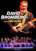 In_Concert_At_Count_Basie_Theater_-David_Bromberg_Band