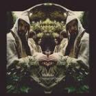 The_Courage_Of_Others_-Midlake