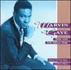 Seek_And_You_Shall_Find_-Marvin_Gaye