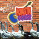 Acoustic_Goose_-Goose_Creek