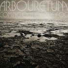 Coming_Out_Of_The_Fog-Arbouretum