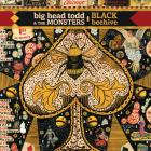 Black_Beehive-Big_Head_Todd_And_The_Monsters
