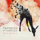 Wild_Animals__-Trampled_By_Turtles_