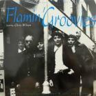 Rare_Demos_And_Live_Recordings_-Flamin'_Groovies