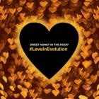#LoveInEvolution-Sweet_Honey_In_The_Rock_