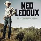 Sagebrush_-Ned_Ledoux_
