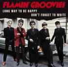 _Long_Way_To_Be_Happy_B/w_Don't_Forget_To_Write_-Flamin'_Groovies