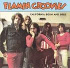 California_Born_And_Bred_-Flamin'_Groovies