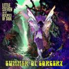 Summer_Of_Sorcery_-Little_Steven