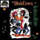 Jealous_Again_-Black_Crowes